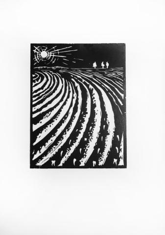 Sowing Teeth - linocut on Zerkall paper © Jonathan Brennan, 2017