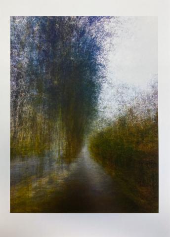 Cyprus Avenue I. Limited edition giclée print © Jonathan Brennan Art