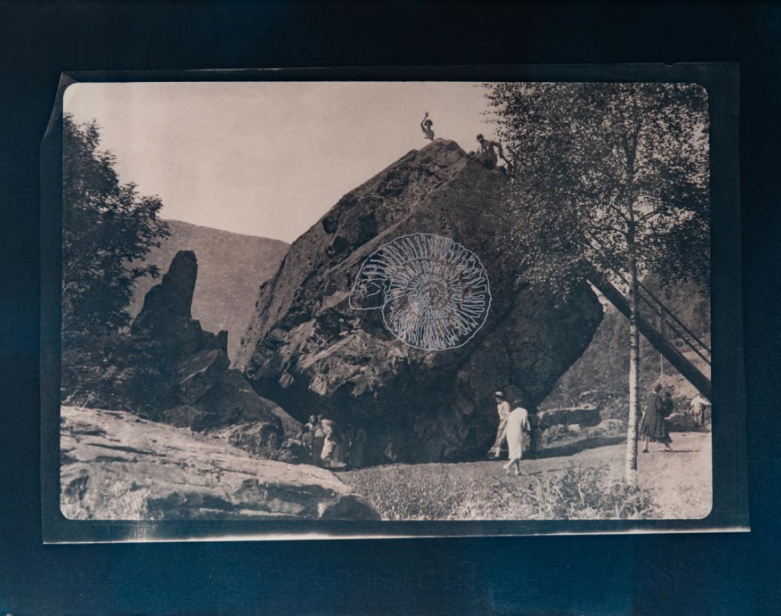 Ammonite. Bowder stone 1/4 V.E. Tea-toned cyanotype and silkscreen on Fabriano © Jonathan Brennan, 2020